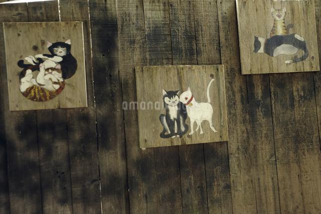 猫看板の写真素材 [FYI04275472]