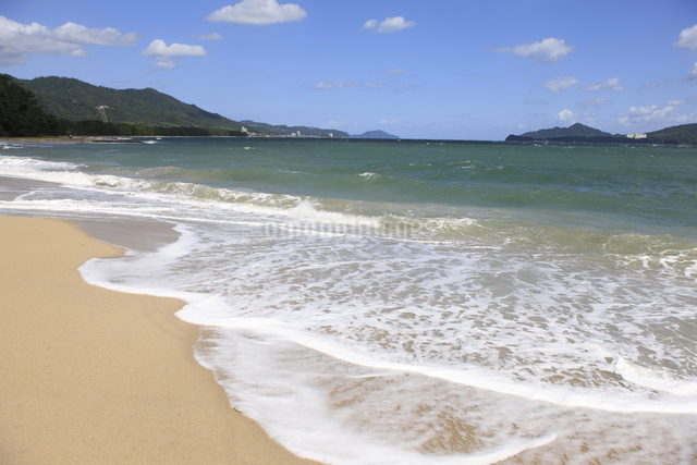 天橋立の砂浜の写真素材 [FYI04277730]