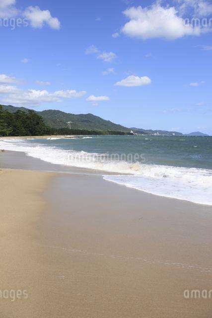 天橋立の砂浜の写真素材 [FYI04277731]