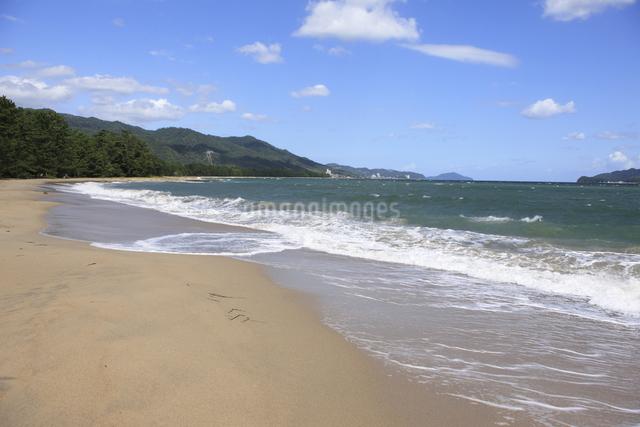 天橋立の砂浜の写真素材 [FYI04277733]