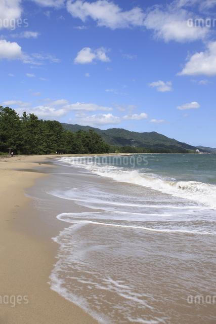 天橋立の砂浜の写真素材 [FYI04277734]