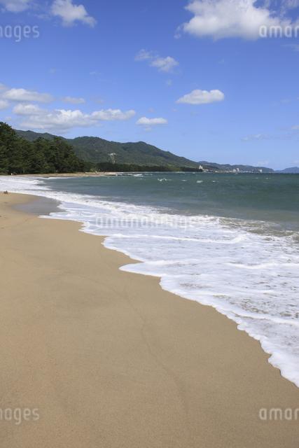 天橋立の砂浜の写真素材 [FYI04277736]