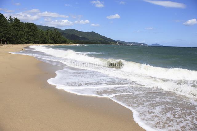 天橋立の砂浜の写真素材 [FYI04277737]
