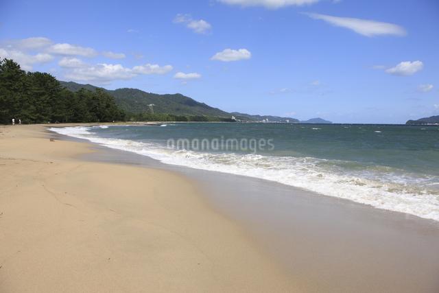 天橋立の砂浜の写真素材 [FYI04277740]