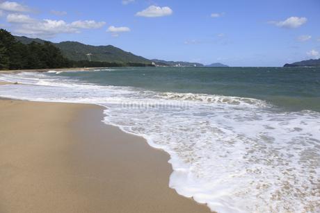 天橋立の砂浜の写真素材 [FYI04277742]