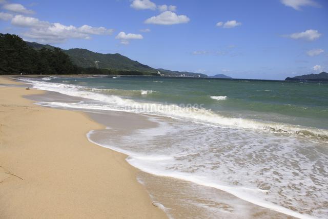 天橋立の砂浜の写真素材 [FYI04277744]