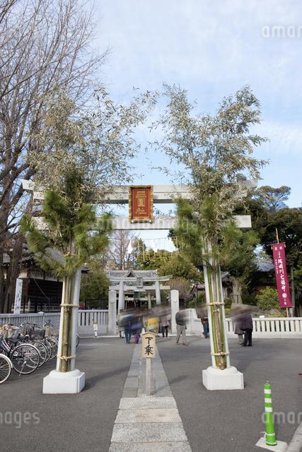 三囲神社のイラスト素材 [FYI04279113]