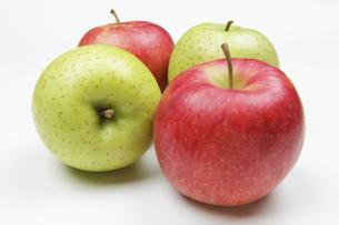 りんご2個の写真素材 [FYI04279416]