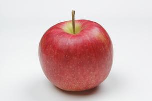りんごの写真素材 [FYI04279420]