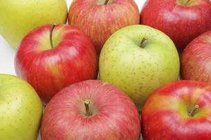 りんご3種の写真素材 [FYI04279425]