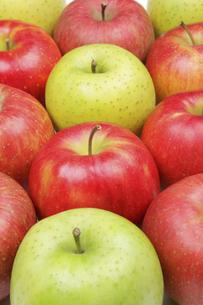りんご3種の写真素材 [FYI04279427]