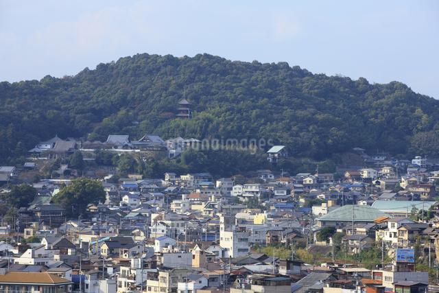 向島から望む尾道の街並の写真素材 [FYI04279472]
