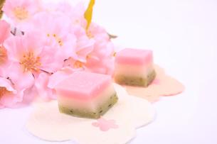 菱餅型の和菓子と桜の写真素材 [FYI04280226]
