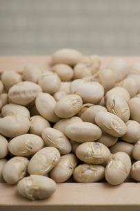 節分 升と炒り大豆の写真素材 [FYI04280726]