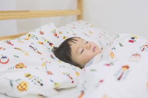 寝ている女の子の写真素材 [FYI04282546]