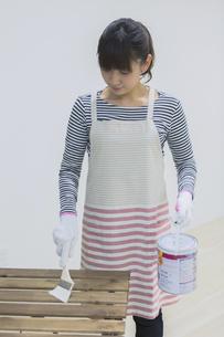 DIYをする女性の写真素材 [FYI04282560]