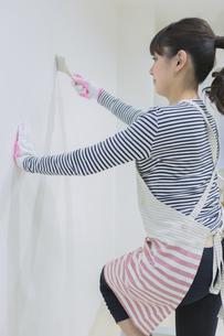 DIYをする女性の写真素材 [FYI04282569]