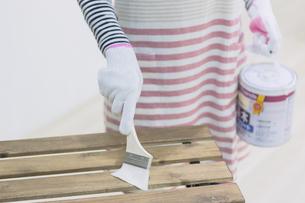DIYをする女性の写真素材 [FYI04282571]
