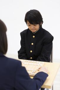 囲碁をする中学生の写真素材 [FYI04282761]