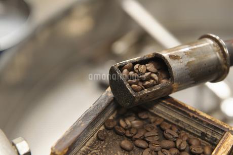 珈琲豆の写真素材 [FYI04283252]