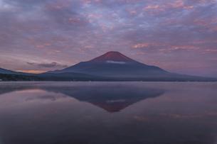 山中湖からの朝焼けの富士山の写真素材 [FYI04283370]