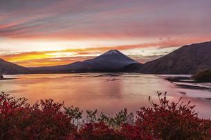 本栖湖から望む朝焼けの富士山の写真素材 [FYI04283386]