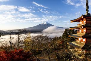 新倉山浅間公園から望む五重塔と富士山の写真素材 [FYI04283393]