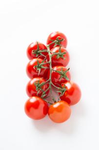 トマトの写真素材 [FYI04283550]