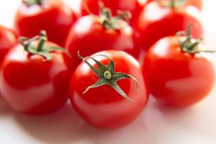 トマトの写真素材 [FYI04283554]