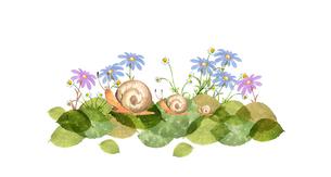 カタツムリと花のイラスト素材 [FYI04284217]