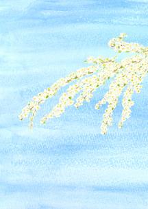 雪柳と青空 水彩のイラスト素材 [FYI04284347]