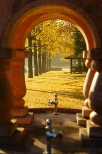 秋の熊本テクノリサーチパークの写真素材 [FYI04284502]