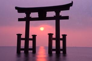 12月 琵琶湖白髭神社の鳥居から昇る日の出の写真素材 [FYI04284592]