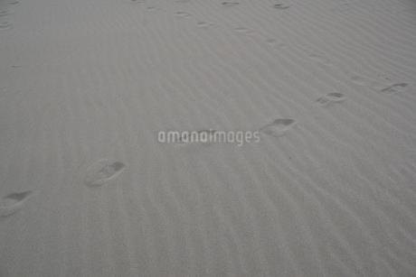 砂浜の写真素材 [FYI04284643]