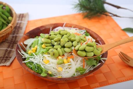 枝豆サラダの写真素材 [FYI04284695]