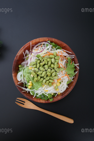 枝豆サラダの写真素材 [FYI04284703]