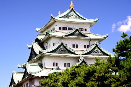 晴天の名古屋城の写真素材 [FYI04284789]