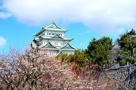 早春の名古屋城の写真素材 [FYI04284793]