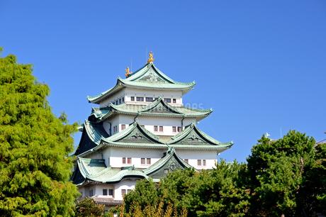 秋晴れの名古屋城の写真素材 [FYI04284794]