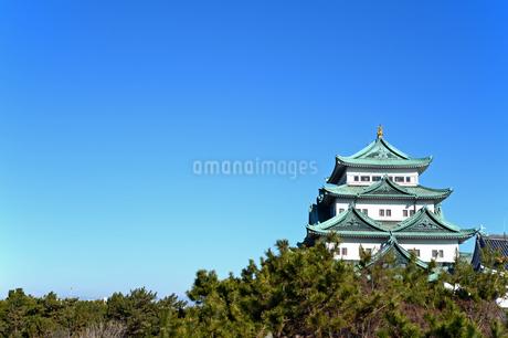 名古屋城天守閣 西南隅櫓からの眺めの写真素材 [FYI04284795]