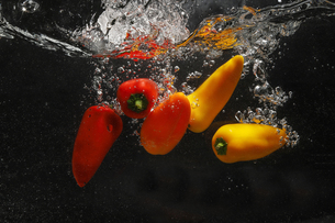 水中のカラーピーマンの写真素材 [FYI04284806]