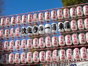 東京都 放生寺の写真素材 [FYI04285112]