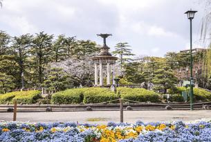 春の花壇越しに鶴舞公園噴水塔を見る風景の写真素材 [FYI04285398]