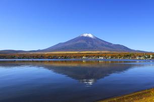 山中湖畔から望む冠雪の富士山の写真素材 [FYI04285993]