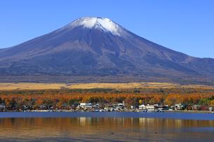 山中湖畔から望む冠雪の富士山の写真素材 [FYI04285994]