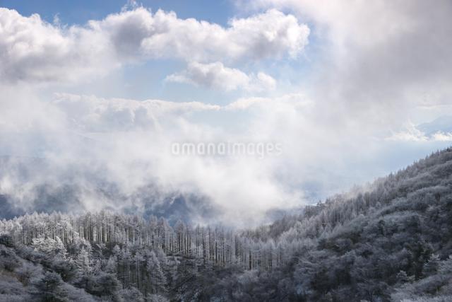 高ボッチ山 日本 長野県 岡谷市の写真素材 [FYI04286859]