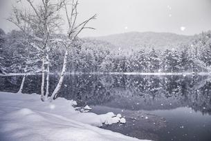 御射鹿池 雪景色の写真素材 [FYI04286873]