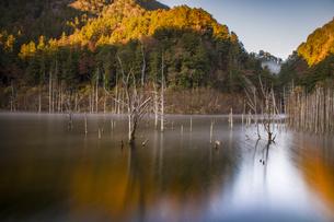 自然湖 日本 長野県 王滝村の写真素材 [FYI04286888]