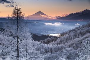 富士山 霧氷の写真素材 [FYI04286898]