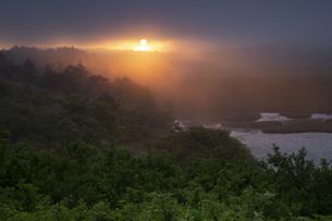 八島湿原 日本 長野県 下諏訪町の写真素材 [FYI04286932]